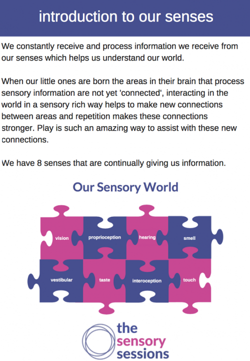 introduction to senses printable