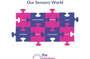 our sensory world